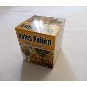 Dates pollen- Pollen de palmier